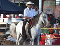 Clic para ver video Feria pecuaria se lució